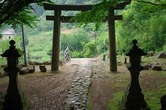 Japanese shrine, a shrine gate on a moutain —nash1011 (Flickr.com)