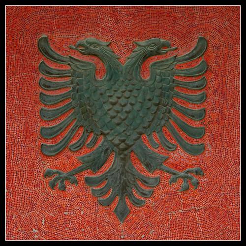 fashion female and have fun albanian eagle tattoo. Black Bedroom Furniture Sets. Home Design Ideas