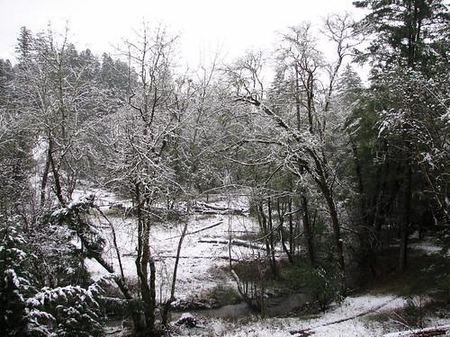 winter snow beelerpond brooktrails uppcreek