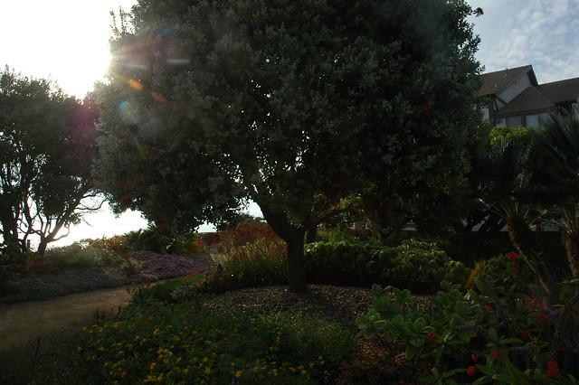 Meditation Garden Self Realization Fellowship Encinitas Flickr Photo Sharing