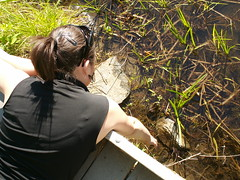christy tries to scare the bullfrog