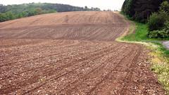 asphalt(0.0), dirt road(0.0), mulch(0.0), waterway(0.0), agriculture(1.0), field(1.0), soil(1.0), mound(1.0),