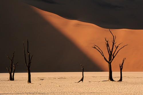 desert dunes scenic namibia naturesfinest bej platinumphoto infinestyle