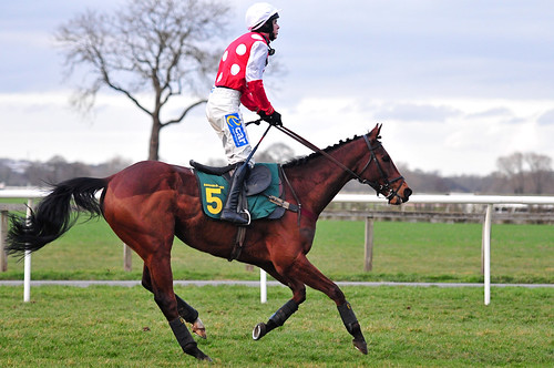 A professional jockey taking part in an exciting race