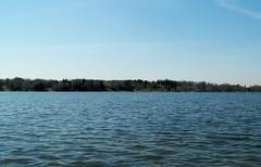 Lake Wilcox