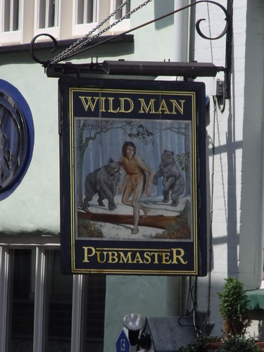 Wild Man Pubmaster - Norwich - pub sign by Elliott Brown