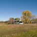 Shepard, North Dakota
