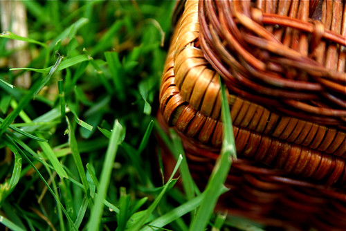 Wicker Picnic Basket Grass 6-1-09 1