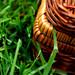 Wicker Picnic Basket Grass 6-1-09 1 by stevendepolo