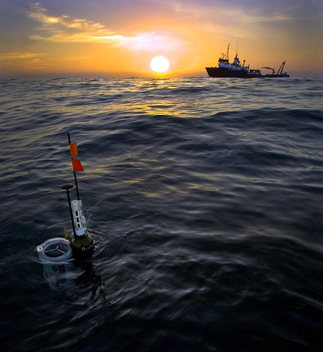 Autonomous Observations of the Ocean Biological Carbon Pump