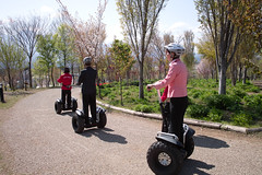 unicycle(0.0), scooter(1.0), vehicle(1.0), segway(1.0), land vehicle(1.0),