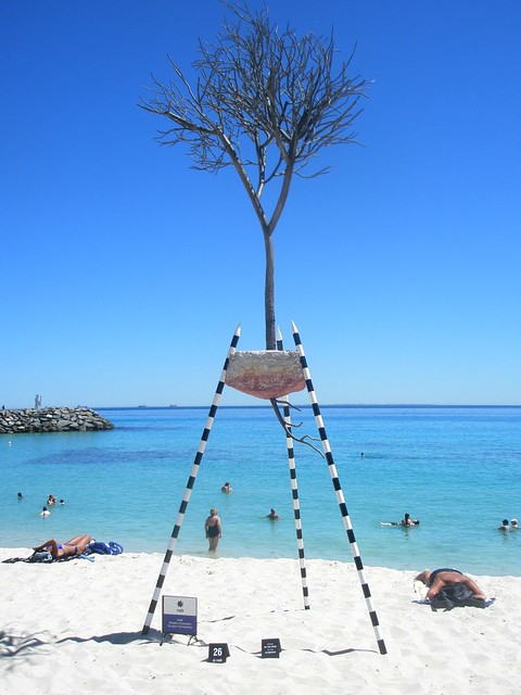 tree....I think