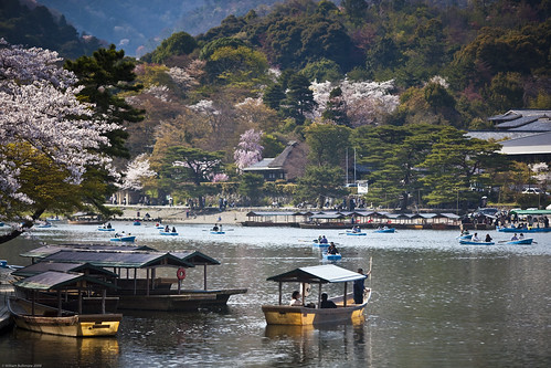 trees water japan landscape boats spring kyoto arashiyama jp handheld sakura osaka soe hozugawariver canonef70200mmf28lisusm kyotofu osakafu theunforgettablepictures canoneos5dmarkii goldstaraward