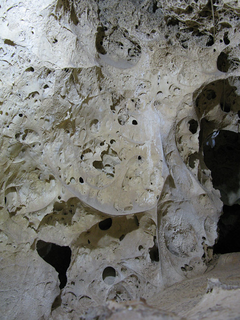 Cave with fossilised algae