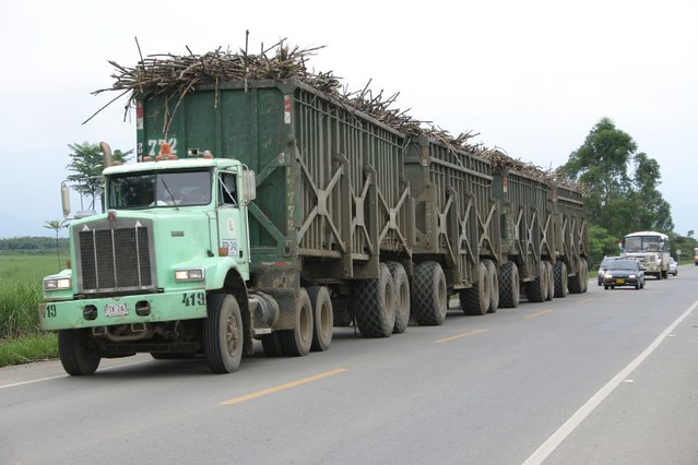 A new challenger to the Aussie outback trucks: The 4-wagon long sugar cane