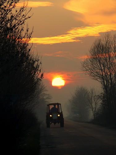 trees sunset arizona sun tractor clouds way geotagged traktor dream poland polska polen casablanca polonia droga tracteur ursus niwa mazowsze chmury slonce mazovia ciagnik geo:lat=52136122 geo:lon=20312004 ciągnikrolniczy gambezia