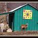 Barn Art for Nancy by emtbkim