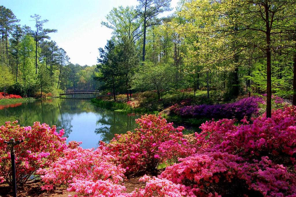 10 best places to visit in georgia state touropia - Callaway gardens pine mountain georgia ...