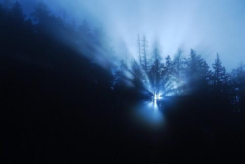 blue trees light sunset mountain fog rockies colorado ridge hero winner rays through shining revelation wetmore herowinner ultraherowinner