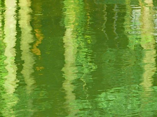 abstract color nature water reflections river alabama elkriver fz50 panasoniclumix athensal bkhagar