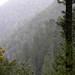 La Cumbre_ Oaxaca_Mexico_2004_12_14_004.jpg por maholyoak