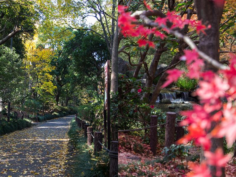 kitanomaru-park-14