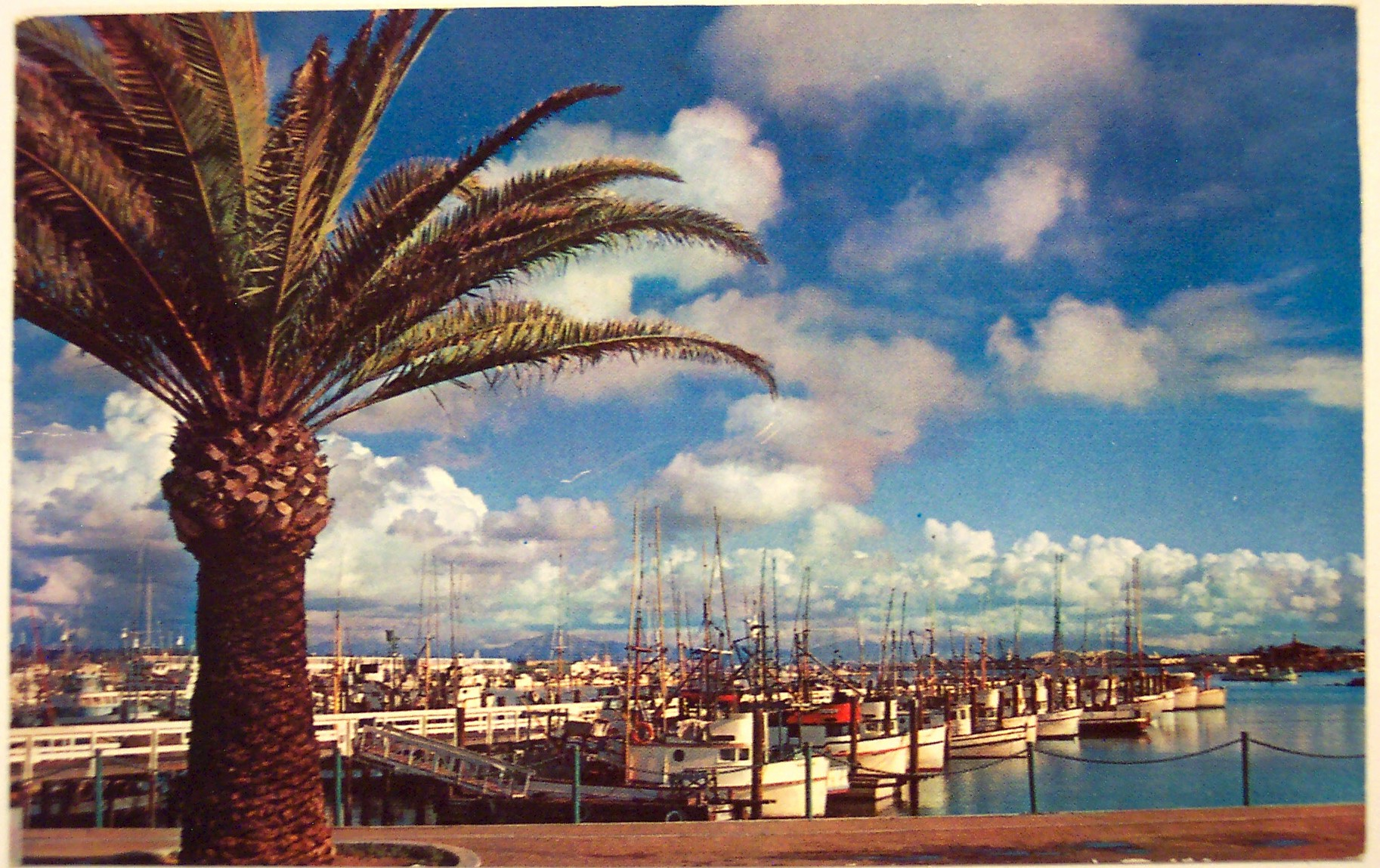 Vintage postcard fishing pier san diego ca flickr for Pier fishing san diego