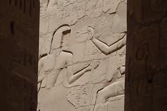Egypt_2009 359