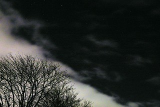 sky_stars_clouds_trees_2