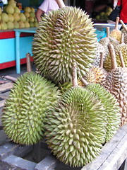 artocarpus(0.0), cempedak(0.0), plant(1.0), produce(1.0), fruit(1.0), food(1.0), durian(1.0),