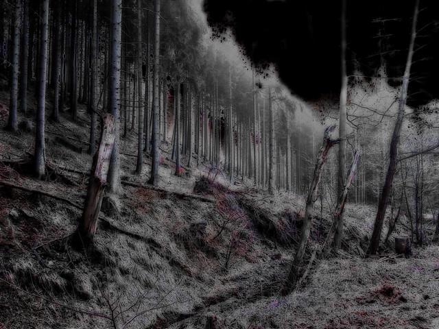 Realm of Darkness Area Descriptions 3421014058_34b3d5368a_z
