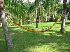 backyard, hammock, public space, playground, park,