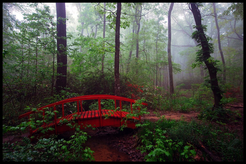 The Bridge to Never Never Land.