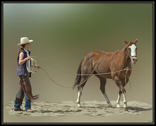 Natural Horsemanship Clinic par orovillesue