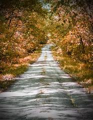 Pathways, Roads, Trails