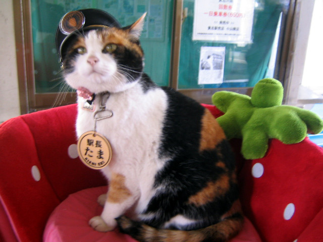 Tama — Station Master of Kishi Station 1