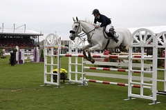 animal sports, equestrianism, english riding, modern pentathlon, show jumping, hunt seat, equestrian sport, sports, recreation, outdoor recreation, hurdle, person,