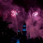 Disneyland June 2009 0145