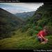 Hiking with Warner, Escazu, Costa Rica