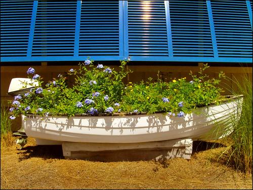 boat florida sanyo fishingboat panamacitybeach