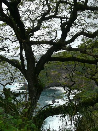 hawaii maui 2009