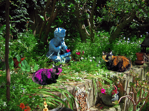 Kitty Wittys Guard the Secret Garden