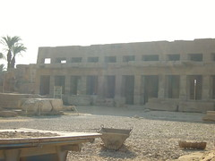 Egypt- (64)