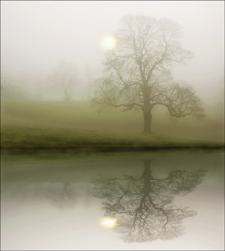 Mists of a winters morning