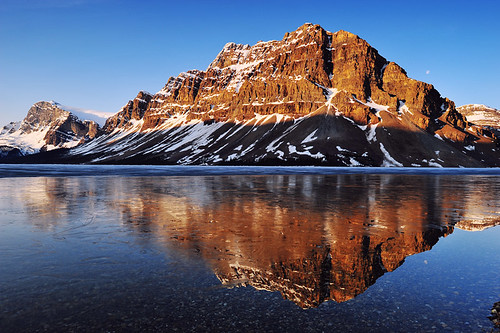 mountain lake canada reflection ice sunrise rockies frozen alberta banff rockymountains reflexions bowlake superaplus aplusphoto