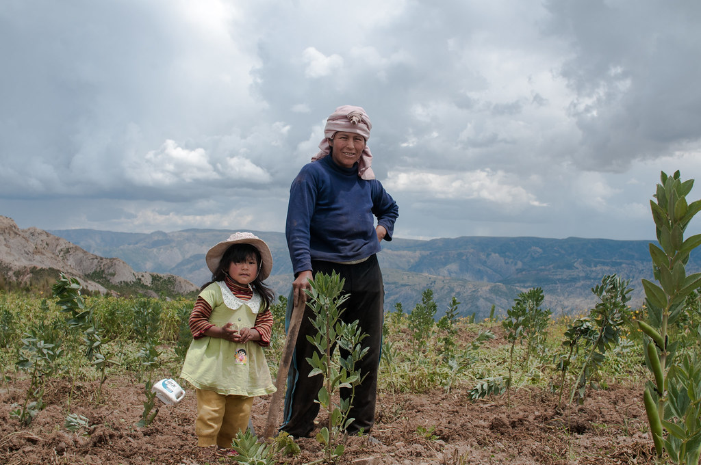 """yes, we can"": Mujeres en el campo boliviano"