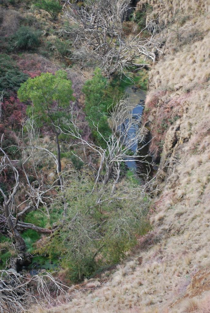 Stream Near Lal Lal Falls