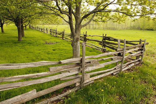 new york friends green church field fence landscape joseph spring grove farm scenic meadow rail smith historic sacred mormon split agriculture lds