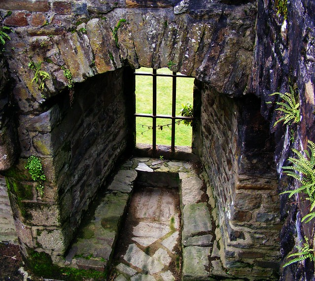 window Fougeres chateau