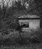 Schatten der Vergangenheit by jungbluth